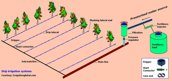 irrigation systems design data drip irrigation - How To Design An Irrigation System At Home