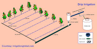 drip irrigation system design